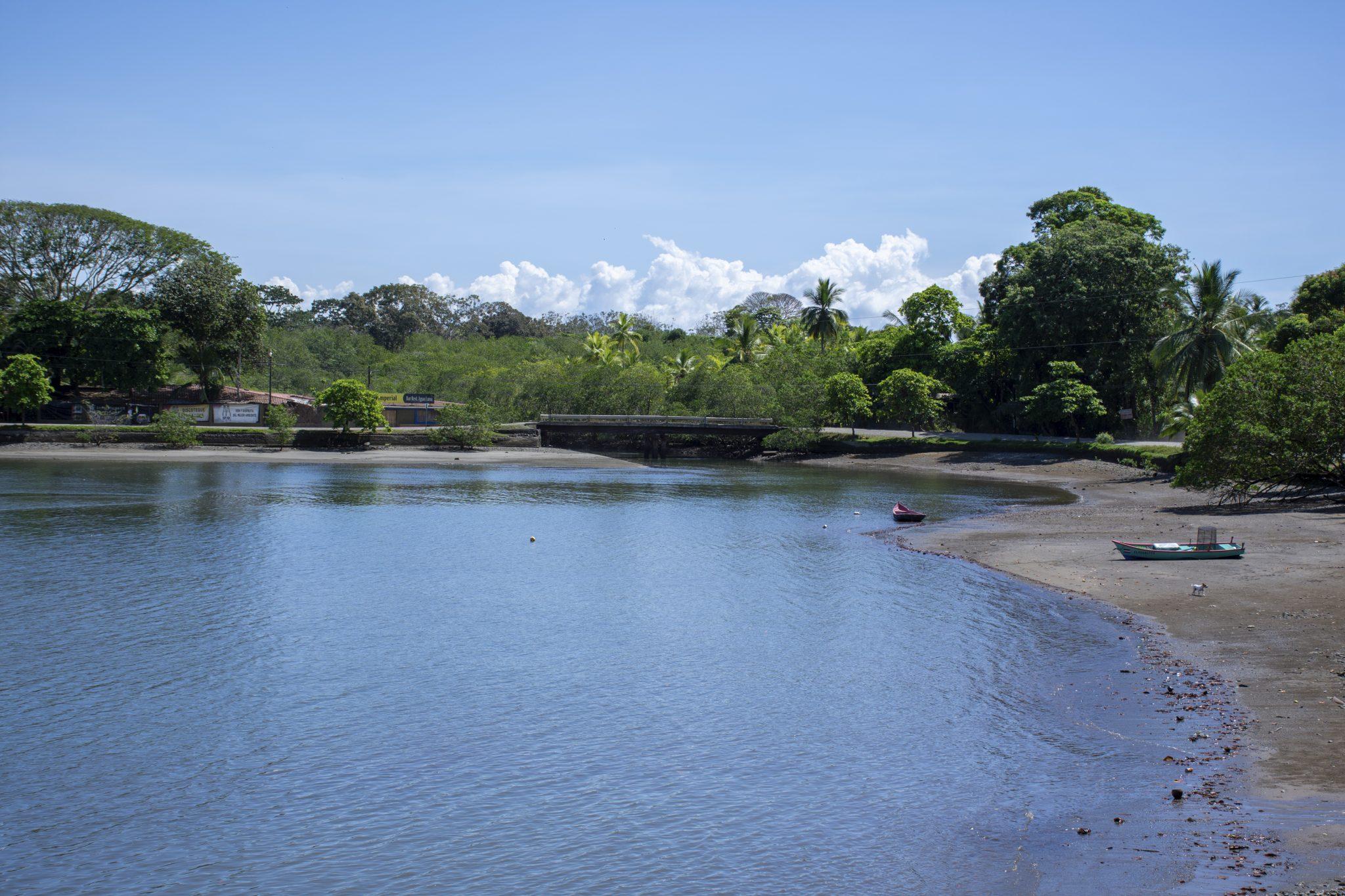 Puerto Jimenez #8