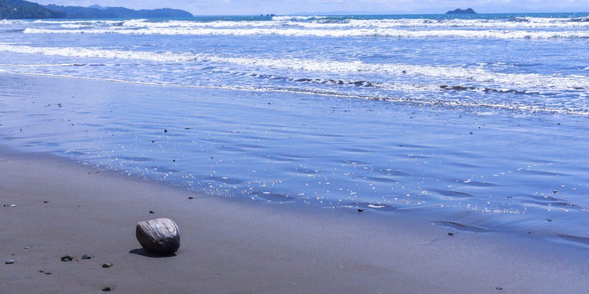Bahía Ballena 5