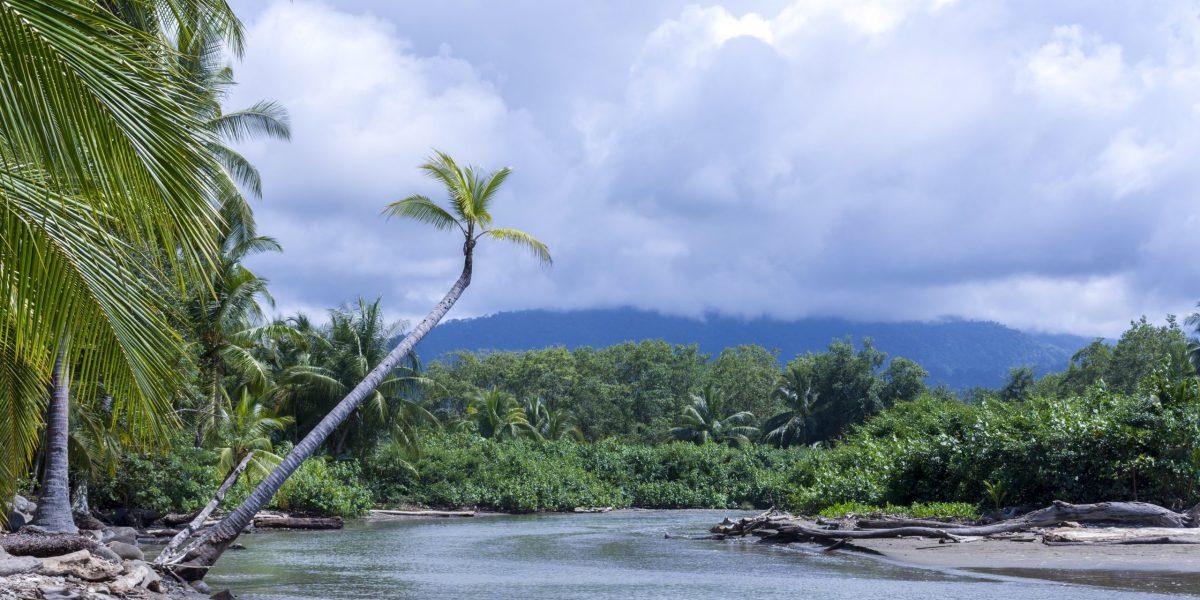 Bahía Ballena 6