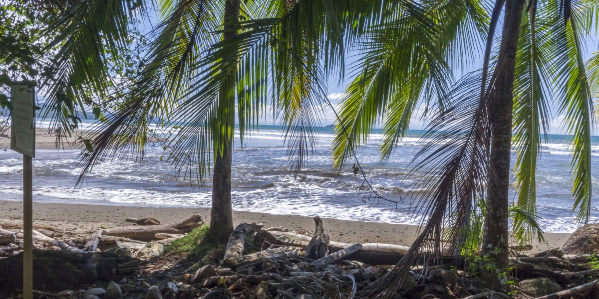 Bahía Ballena 7