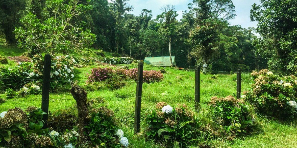 Cerro_Danta #7