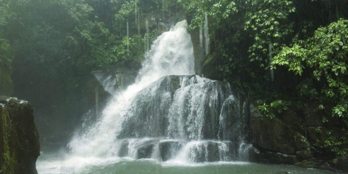 La Ceiba Ecoaventura #4