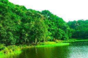 Laguna Don Manuel Tarrazu #10