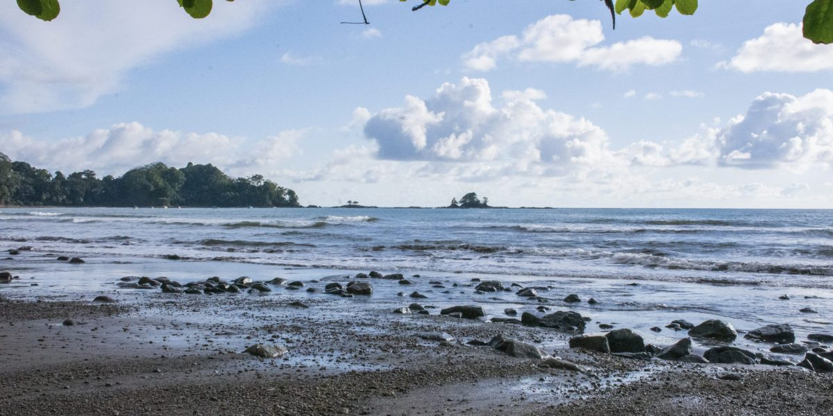 Playa Dominicalito 1