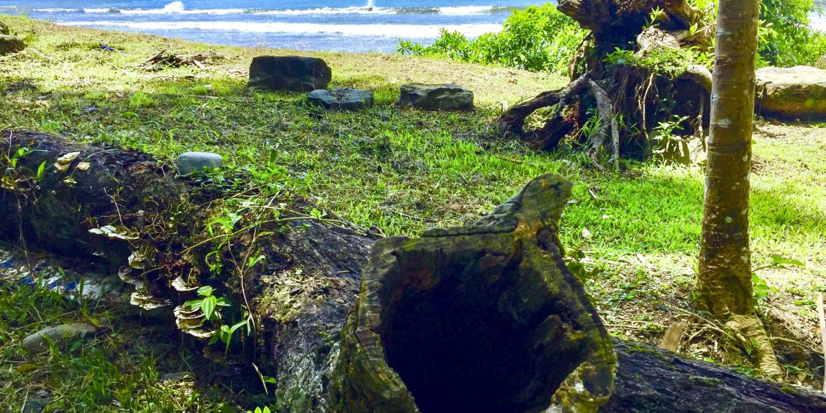 Playa Dominicalito 5