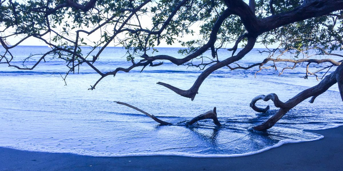 Playa Hermosa 6