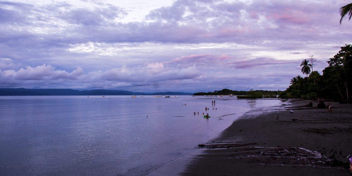 Puerto Jimenez #10