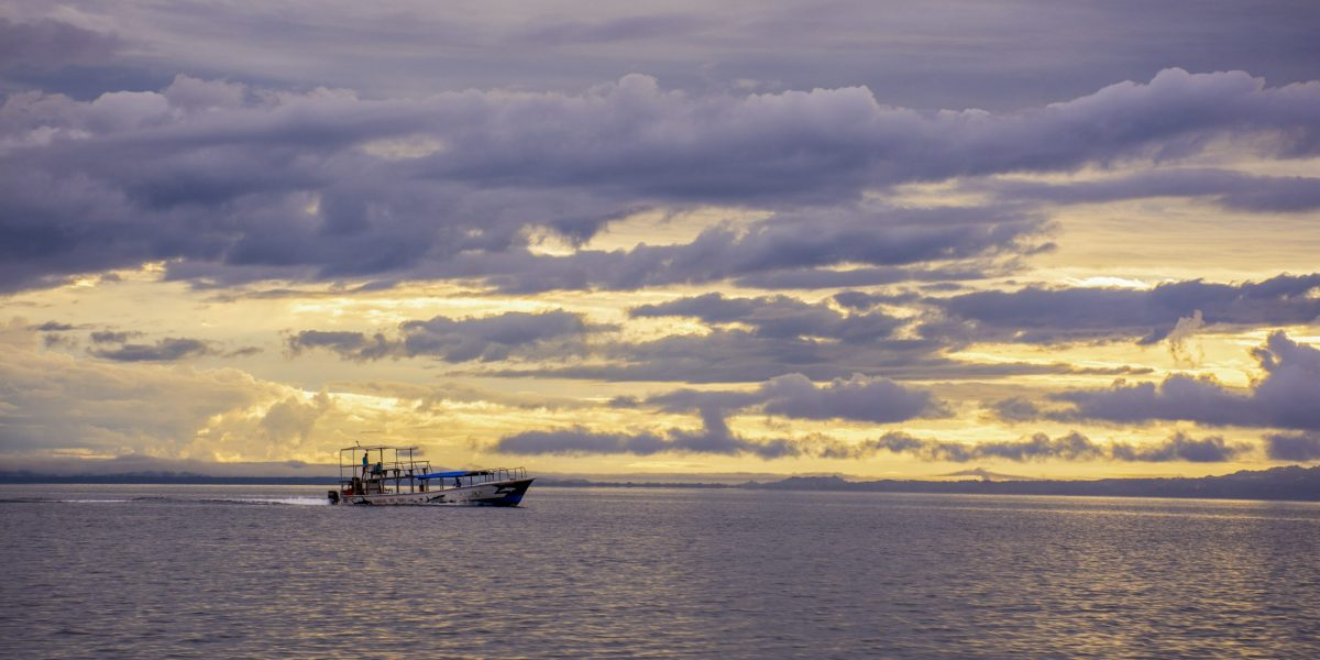 Puerto Jimenez #2