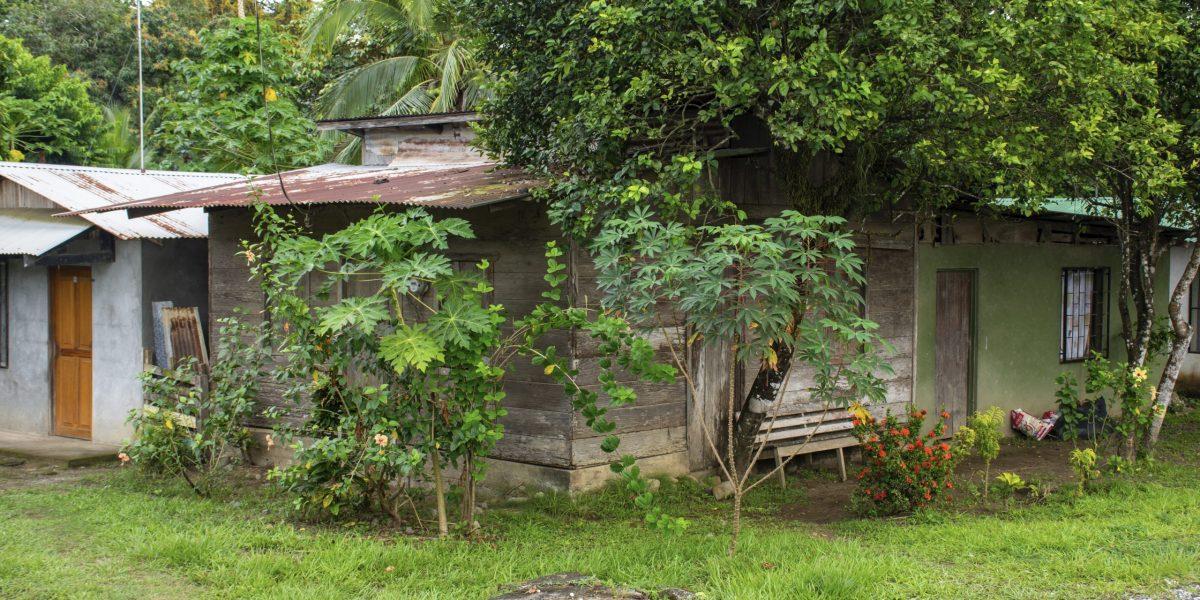 Puerto Jimenez #5