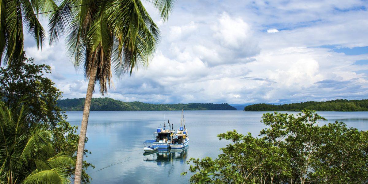 Puerto Jimenez #9